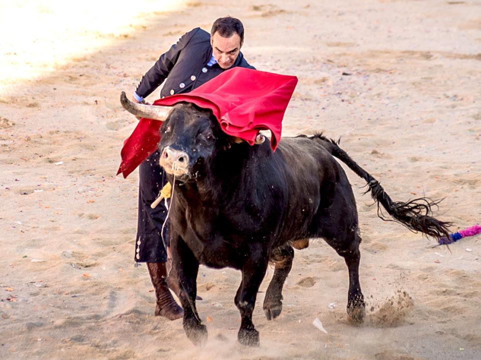 torero en carnaval de ciudad rodrigo